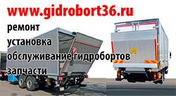 gidrobort36.ru
